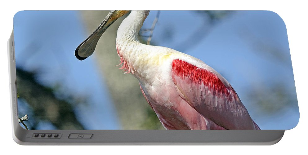 Wildlife Portable Battery Charger featuring the photograph Roseate Spoonbill by Kenneth Albin