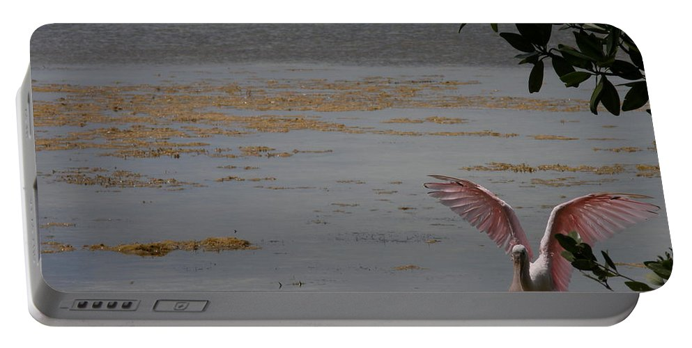 Roseate Spoonbill Portable Battery Charger featuring the photograph Roseate Spoonbill by Kimberly Mohlenhoff