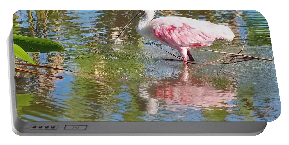 Roseate Spoonbill Portable Battery Charger featuring the photograph Roseate Spoonbill Young Adult by Barbara Chichester