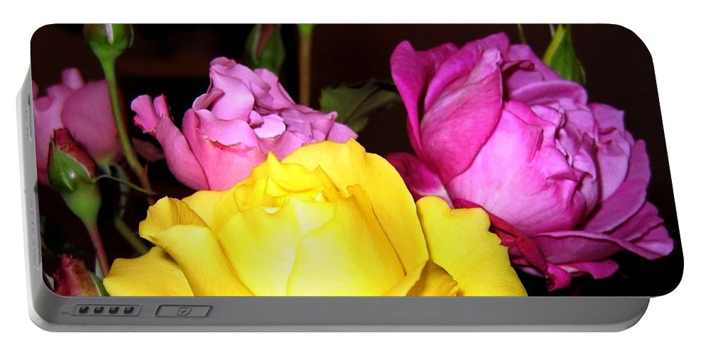 Roses Portable Battery Charger featuring the photograph Roses 4 by Will Borden