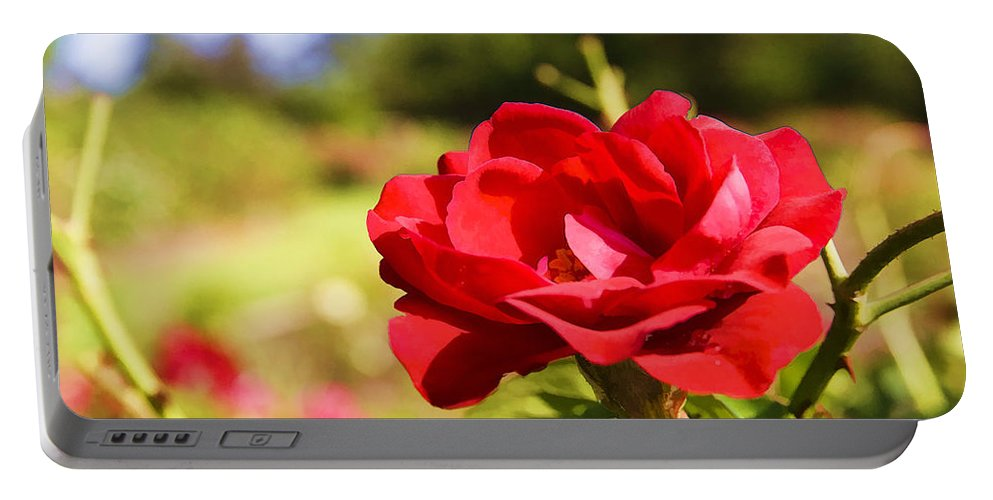 Rose Portable Battery Charger featuring the photograph Roses Are Red by Ricky Barnard