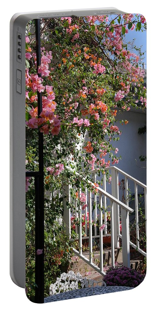 Roses Portable Battery Charger featuring the photograph Roses In Winter by Susanne Van Hulst