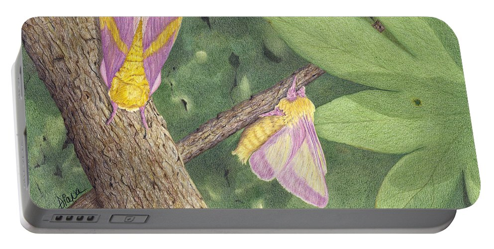Colored Pencil Portable Battery Charger featuring the drawing Rosy Maple Moth Gathering by Diana Hrabosky