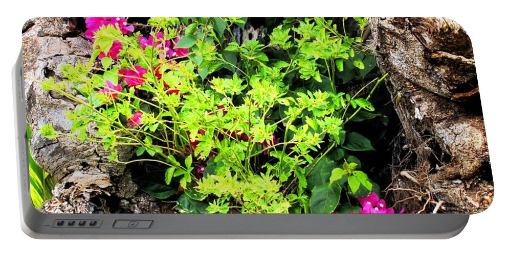 Flowers Portable Battery Charger featuring the photograph Rough Beauty by Ian MacDonald