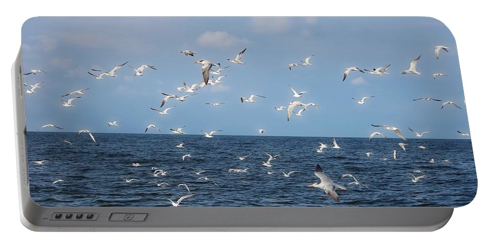 Royal Tern Portable Battery Charger featuring the photograph Royal Blue Ocean Tern by Barbara Chichester
