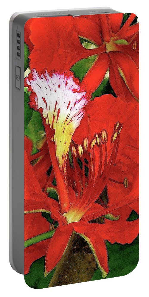 Hawaii Iphone Cases Portable Battery Charger featuring the photograph Royal Poinciana by James Temple