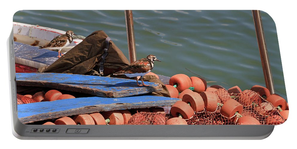 Ruddy Turnstone Portable Battery Charger featuring the photograph Ruddy Turnstones Perching On Fishing Nets by Louise Heusinkveld