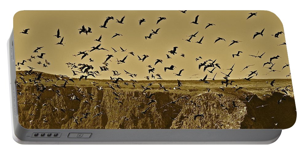 Birds Portable Battery Charger featuring the photograph Run For Cover by Diana Hatcher