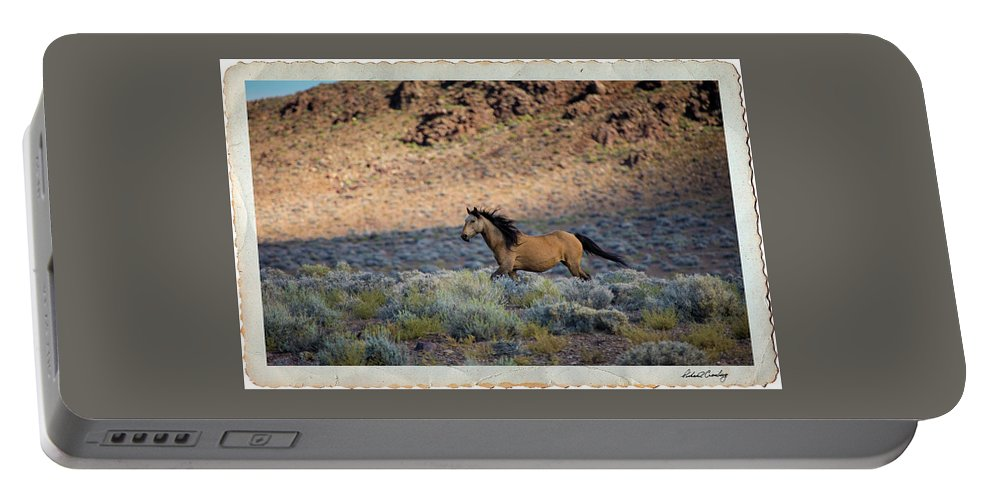 Wild Horse Portable Battery Charger featuring the photograph Running Buckskin by Richard Cronberg