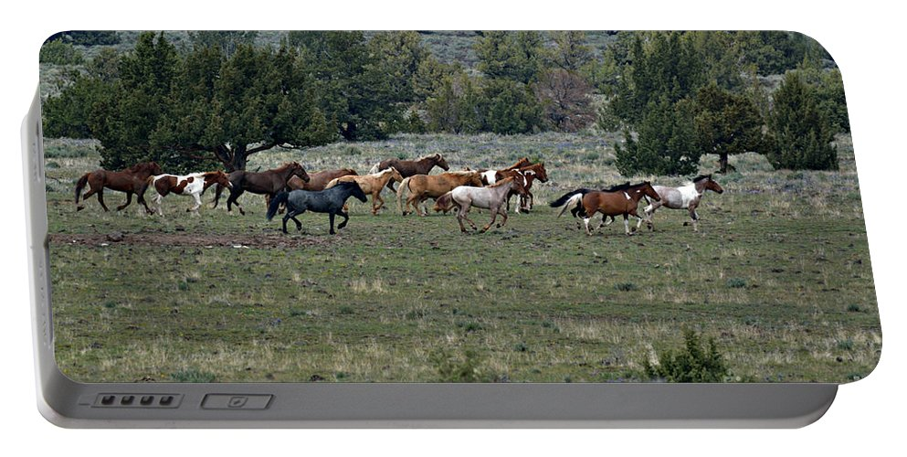 Horses Portable Battery Charger featuring the photograph Running Wild Horses by Out West Originals