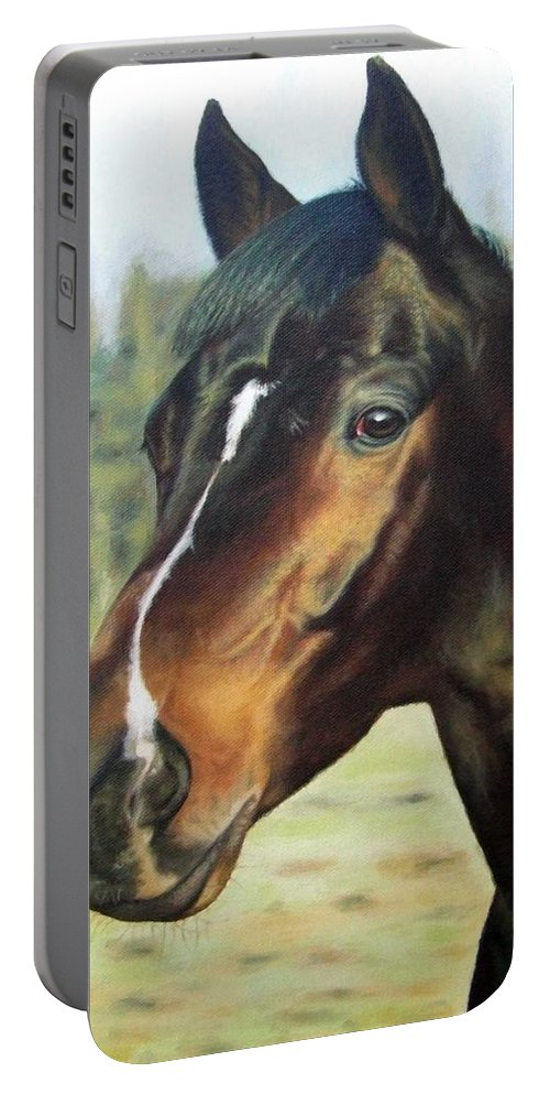Horse Portable Battery Charger featuring the painting Russian Horse by Nicole Zeug