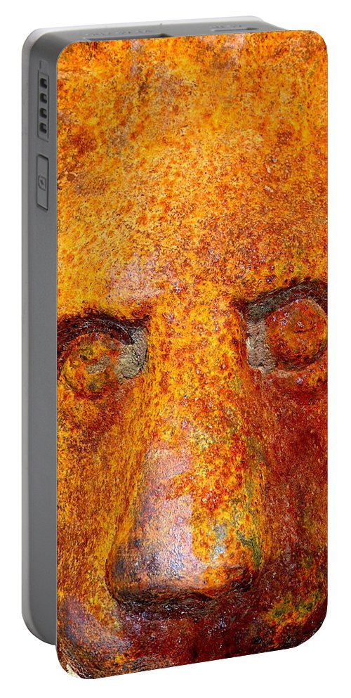 Lion Portable Battery Charger featuring the photograph Rusty The Lion by Ed Weidman