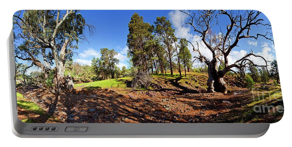 Sacred Canyon Flinders Ranges South Australia Australian Landscape Pano Panorama Outback Spring Portable Battery Charger featuring the photograph Sacred Canyon, Flinders Ranges by Bill Robinson