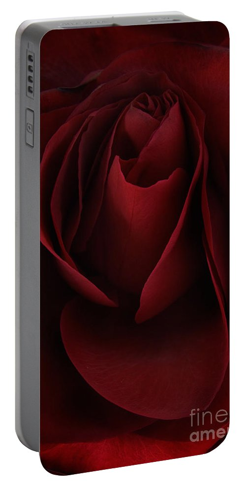 Rose Portable Battery Charger featuring the photograph Sad Rose by Ann Garrett