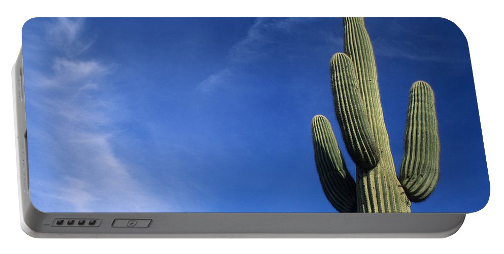 Saguaro Cactus Portable Battery Charger featuring the photograph Saguaro Cactus H by Steve Williams