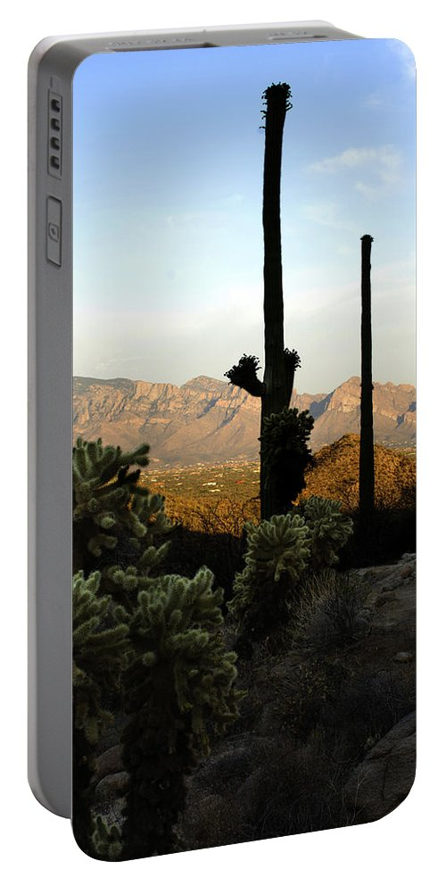 Saguaro Portable Battery Charger featuring the photograph Saguaro Silhouette by Jill Reger