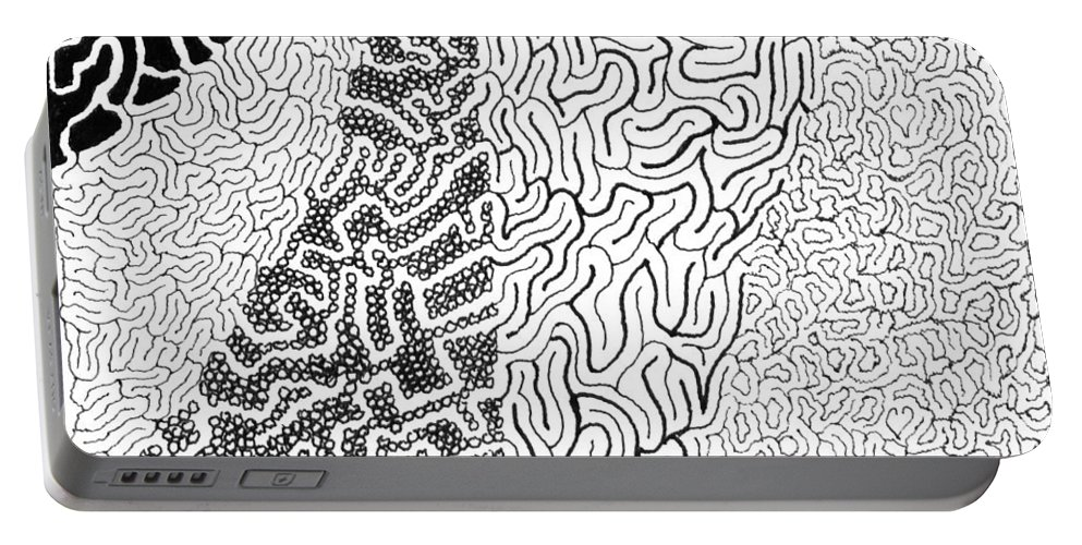 Mazes Portable Battery Charger featuring the drawing Salmagundi by Steven Natanson