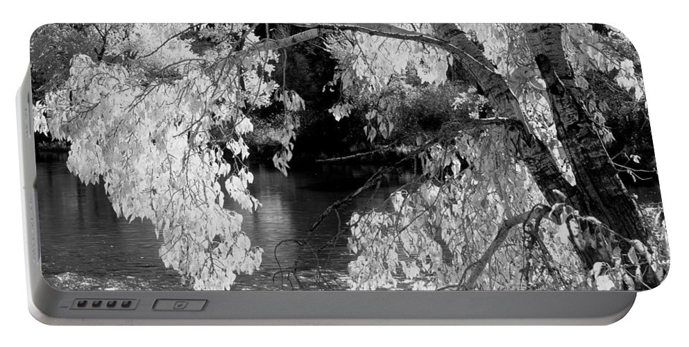 Salmon River Portable Battery Charger featuring the photograph Salmon River Autumn by Leland D Howard
