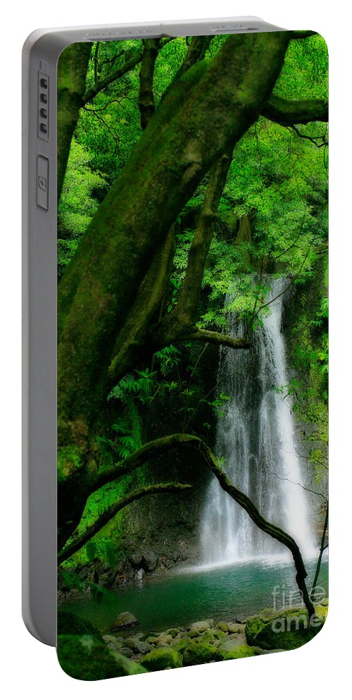 Environment Portable Battery Charger featuring the photograph Salto Do Prego Waterfall by Gaspar Avila