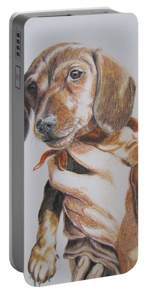 Puppy Portable Battery Charger featuring the drawing Sambo by Karen Ilari
