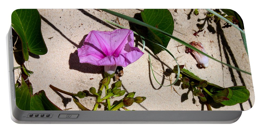 Susan Vineyard Portable Battery Charger featuring the photograph Sand Flowers by Susan Vineyard
