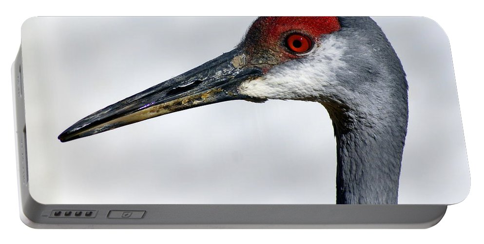 Birds Portable Battery Charger featuring the photograph Sandhill Crane by Marty Koch