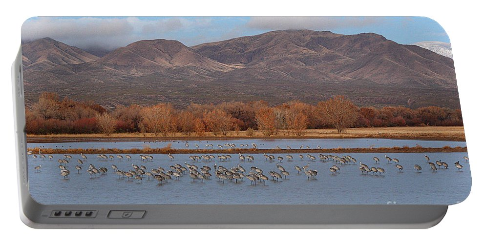 Sandhill Crane Portable Battery Charger featuring the photograph Sandhill Cranes Beneath The Mountains Of New Mexico by Max Allen