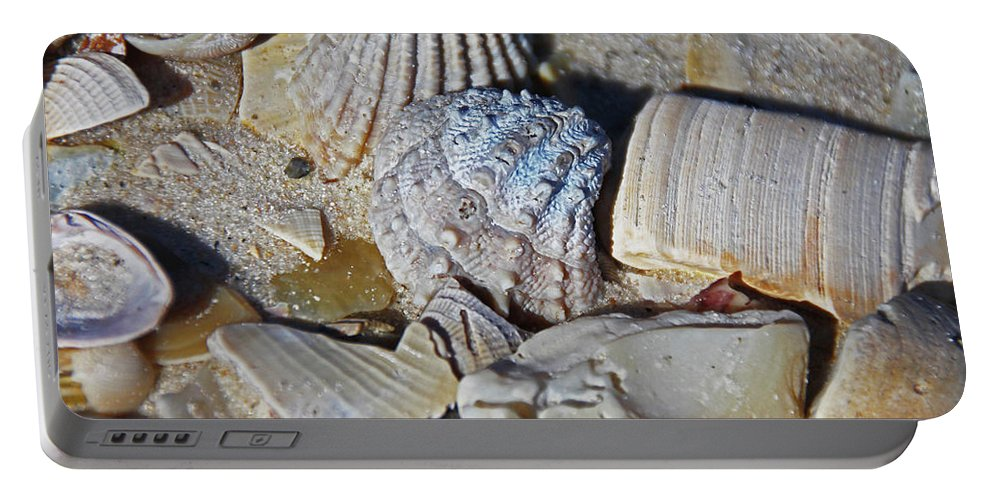 Sanibel Island Portable Battery Charger featuring the photograph Sanibel Island Seashells Iv by Michiale Schneider