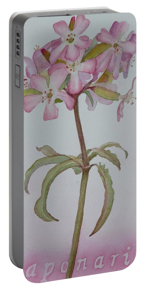 Flower Portable Battery Charger featuring the painting Saponaria by Ruth Kamenev