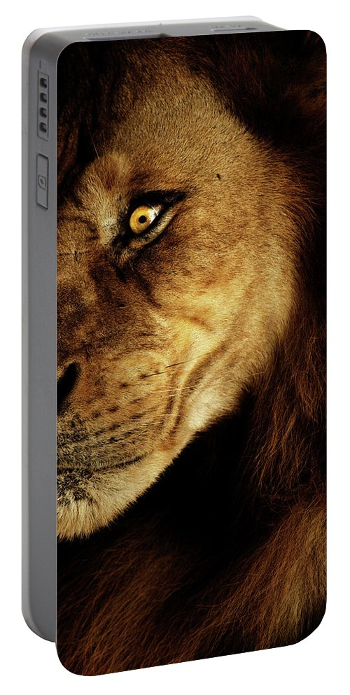 Lion Portable Battery Charger featuring the photograph Savage by Andrew Paranavitana