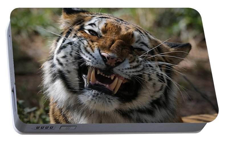 Tiger Portable Battery Charger featuring the photograph Say Cheese by Ernie Echols