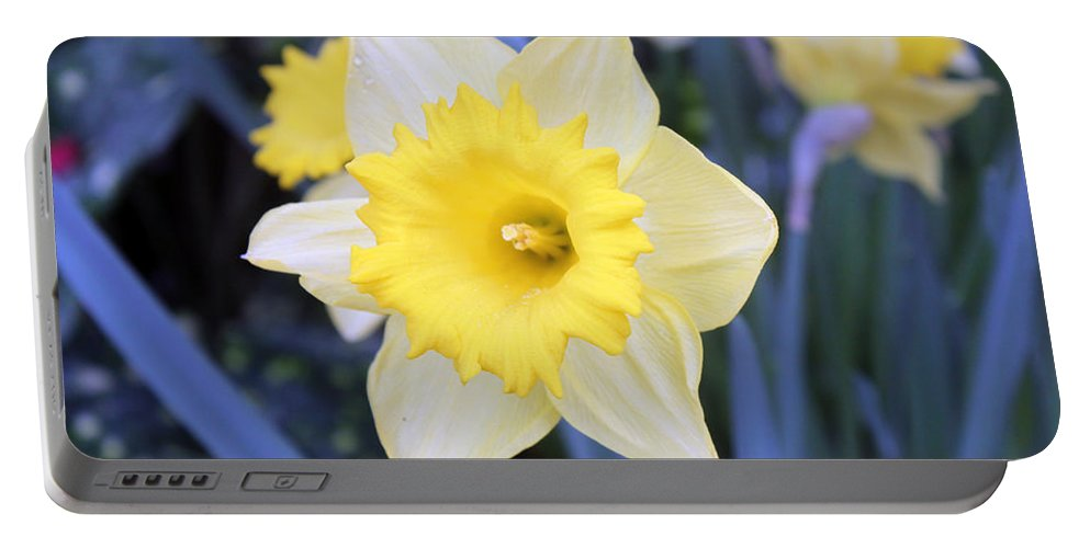 Flower Portable Battery Charger featuring the photograph Say Yes by Munir Alawi