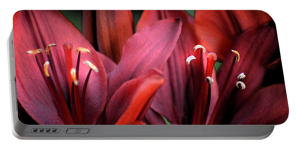 Scarlet Portable Battery Charger featuring the photograph Scarlet Lilies by Kathleen Stephens