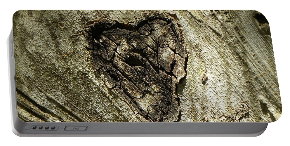 Tree Portable Battery Charger featuring the photograph Love Endures by Shannon Turek