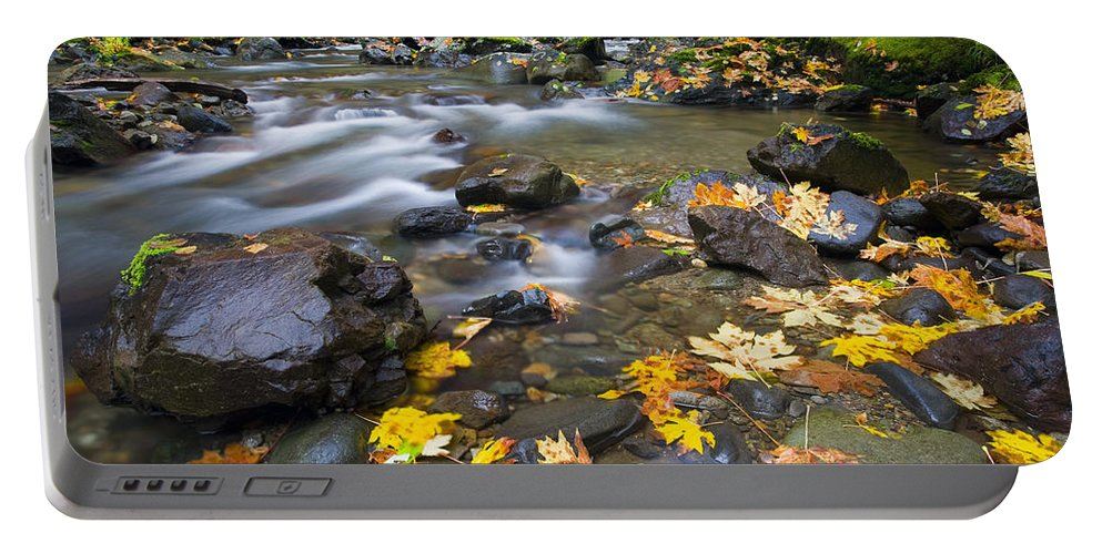 Leaves Portable Battery Charger featuring the photograph Scattered About by Mike Dawson