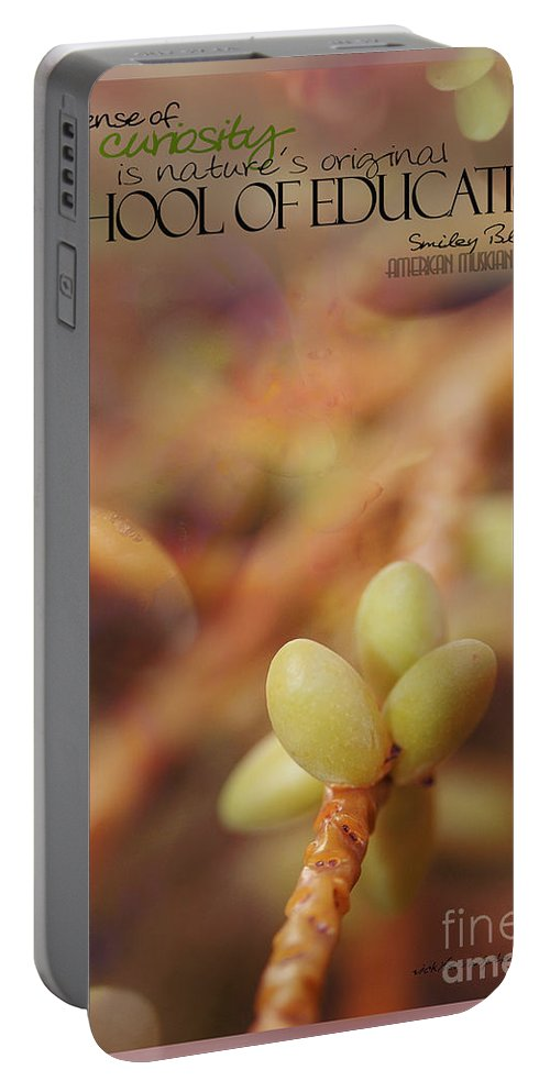 Palm Pods Portable Battery Charger featuring the photograph School Of Curiosity 08 by Vicki Ferrari