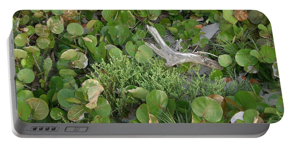 Nature Portable Battery Charger featuring the photograph Sea Grape Dune by Kimberly Mohlenhoff