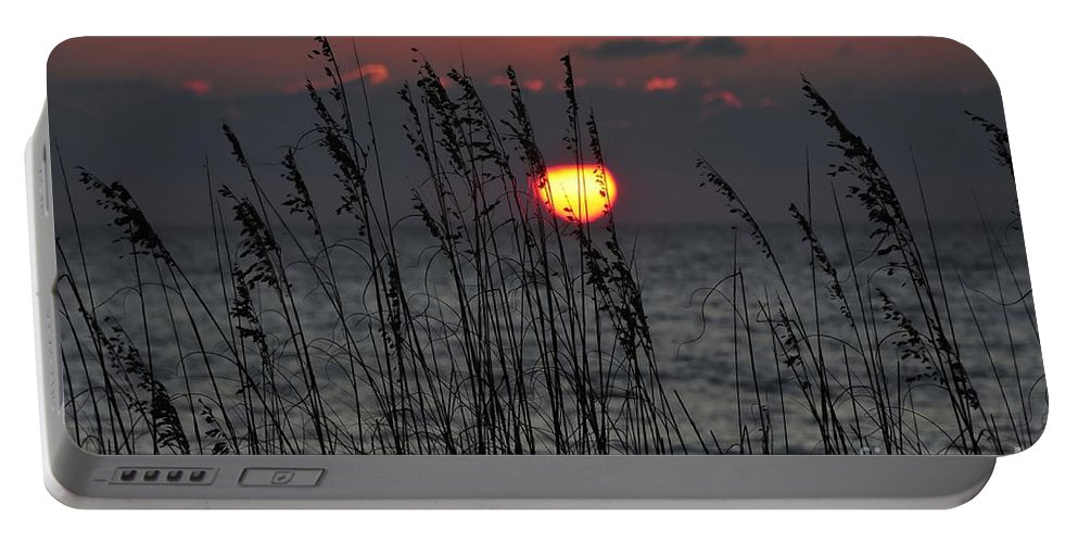 Sea Oats Portable Battery Charger featuring the photograph Sea Oats by David Lee Thompson