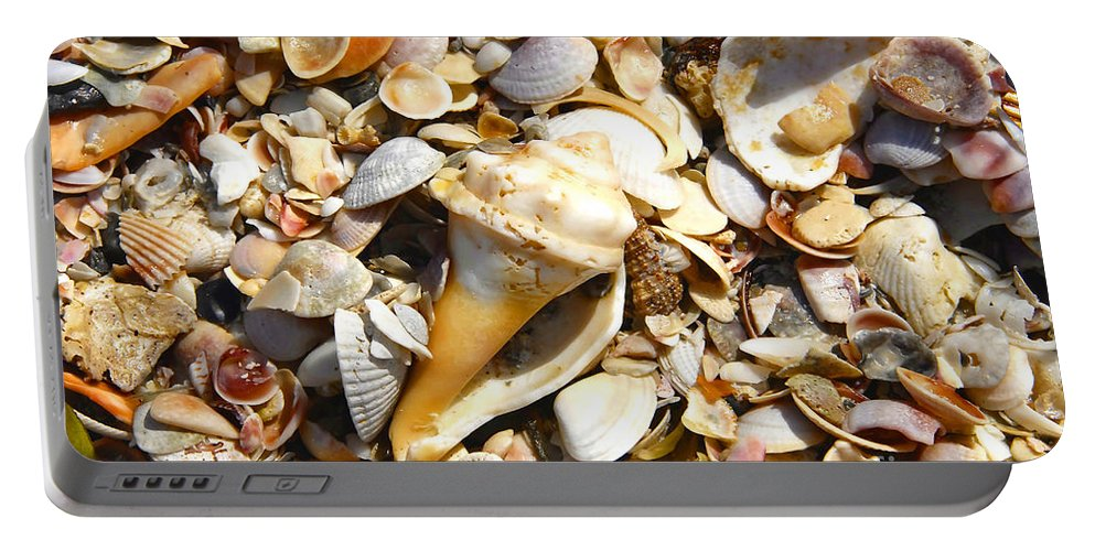 Florida Portable Battery Charger featuring the photograph Sea Shells by David Lee Thompson
