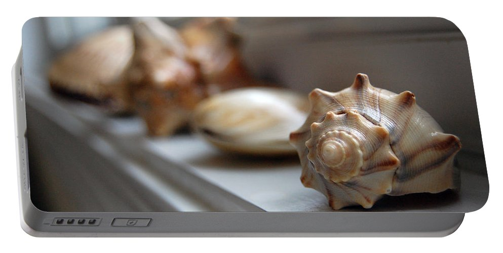 Seashells Portable Battery Charger featuring the photograph Sea Shells by Robert Meanor