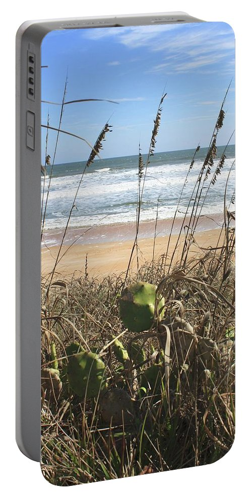 Beach Portable Battery Charger featuring the photograph Seagrass by Jost Houk