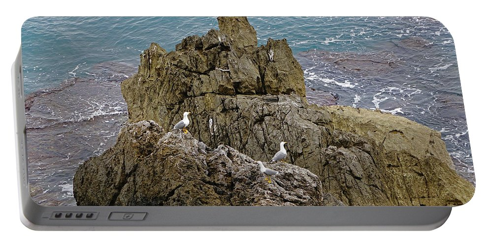 Cefalu Portable Battery Charger featuring the photograph Seagull Island On Cefalu In Sicily by Richard Rosenshein