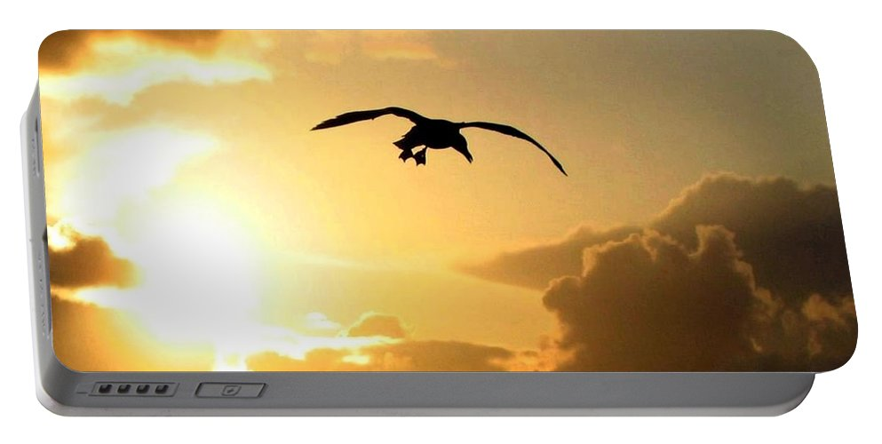 Seagull Portable Battery Charger featuring the photograph Seagull Silhouette by Will Borden