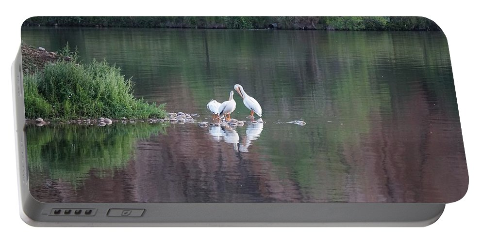 Watson Portable Battery Charger featuring the photograph Seagulls At Lake by Susan Brown