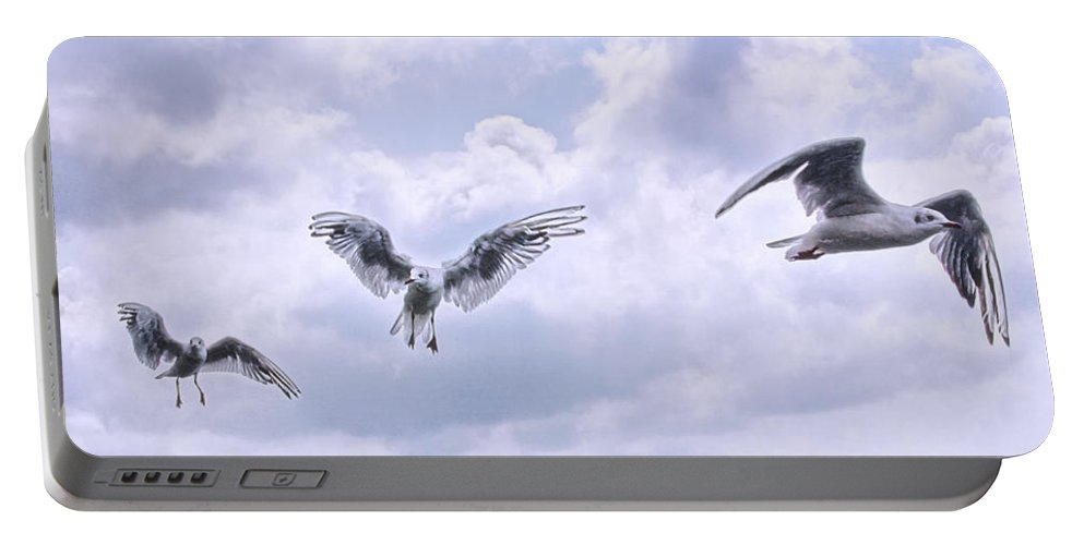 Seagulls Portable Battery Charger featuring the photograph Seagulls by Claudia Moeckel