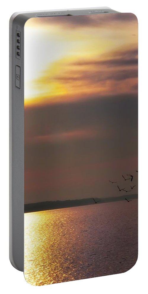 Seagulls Portable Battery Charger featuring the photograph Seagulls On The Chesapeake by Bill Cannon