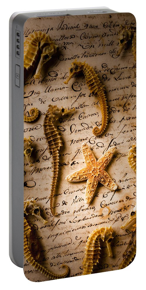 Seahorses Starfish Old Letter Words Portable Battery Charger featuring the photograph Seahorses And Starfish On Old Letter by Garry Gay