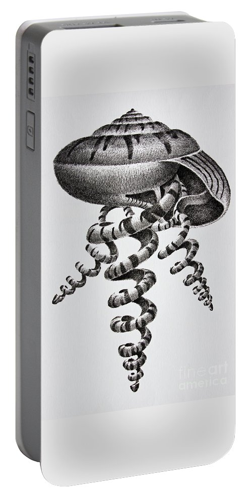 Seashell Print Portable Battery Charger featuring the drawing Seashell Forms by James Williamson