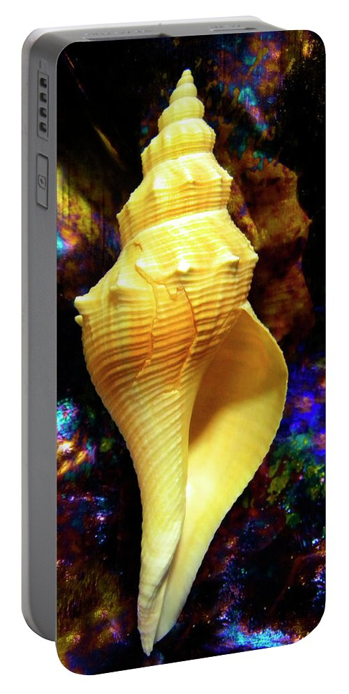 Frank Wilson Portable Battery Charger featuring the photograph Seashell by Frank Wilson