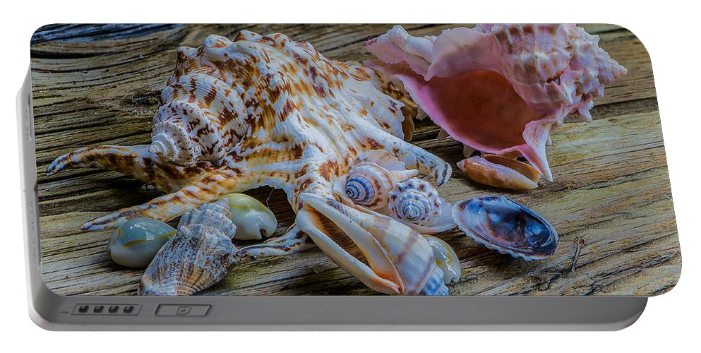 Seashell Portable Battery Charger featuring the photograph Seashells On The Dock by Randy Walton